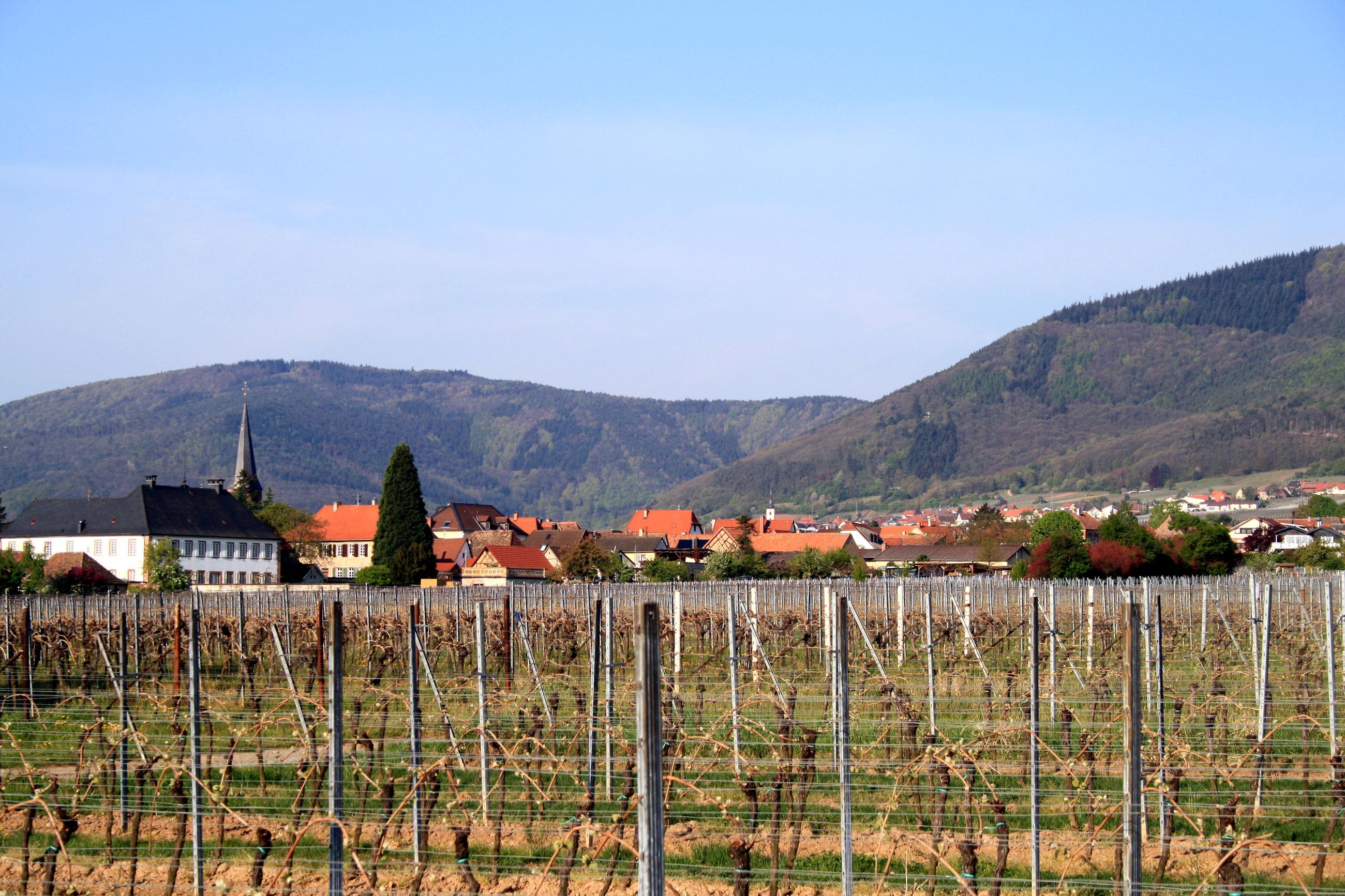 Rhodt-u-Rietburg